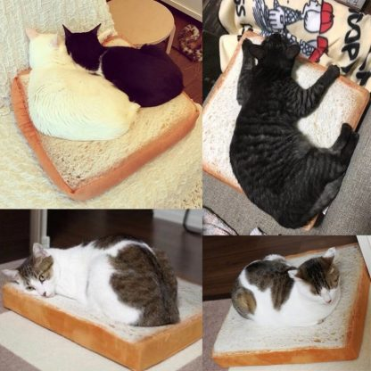 Cat Toast Bed with various cats