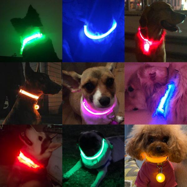 Led Battery Dog Collar
