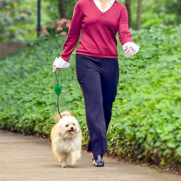 Mini Retractable Dog Leash