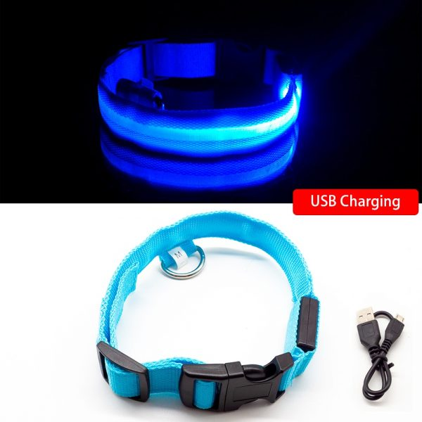 Led USB Rechargeable Dog Collar