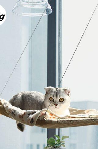 Cat Lounge Window Hammock Mount Bed