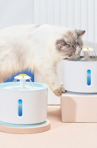 Automatic Water Fountain Drinking Bowl