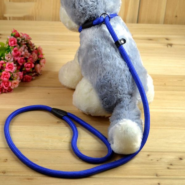 Simple Dog Leash and Collar
