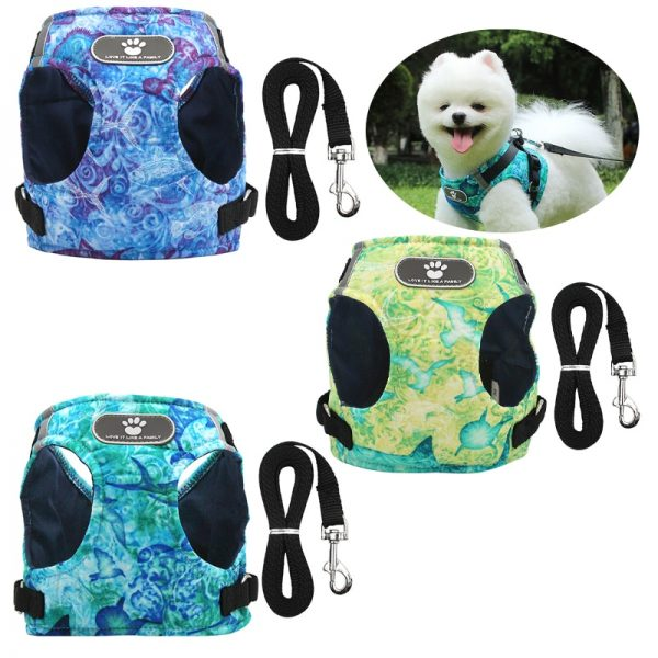 Dreamy Winter Dog Harness Vest with Leash