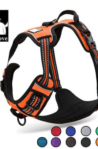 Truelove All Weather Reflective Dog Harness