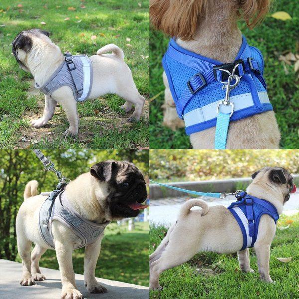 Reflective Mesh Dog Harness and Leash