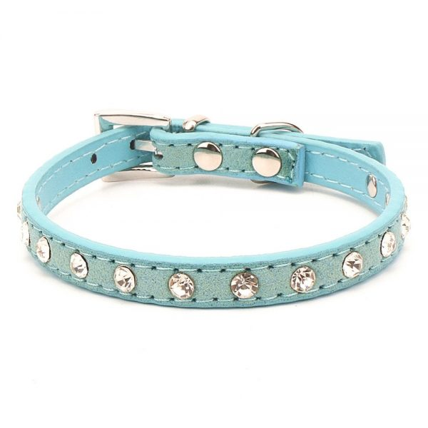 Fashion Small Pet Collar