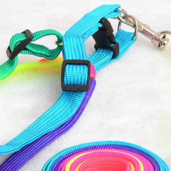 EDC Rainbow Dog Collar Harness and Leash