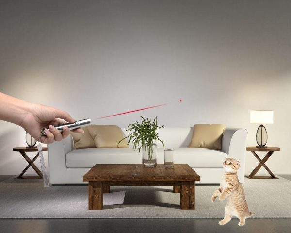 Red Laser and White LED Pointer Pen