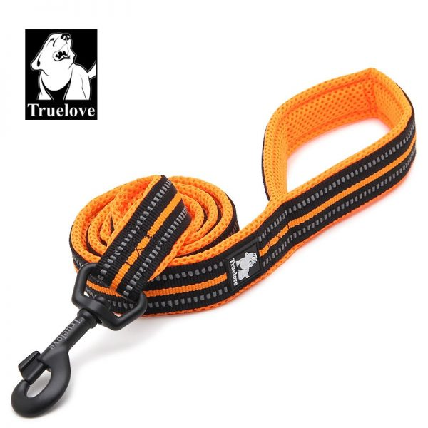 Truelove Stripe Reflective Nylon Dog Leash 4 Feet