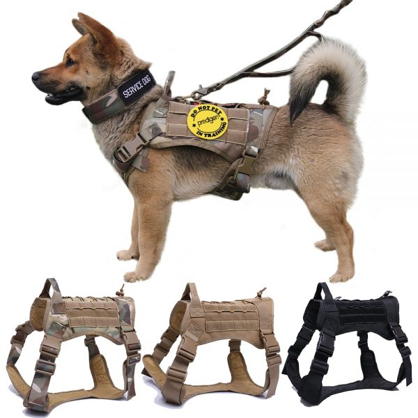 Tactical Dog Harness with Leash