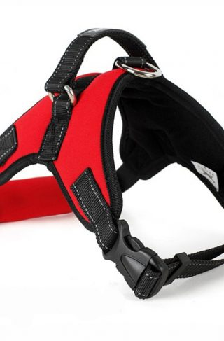 Tailup Neoprene Dog Harness Red