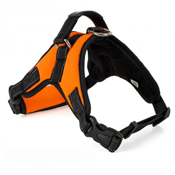 Tailup Neoprene Dog Harness Orange