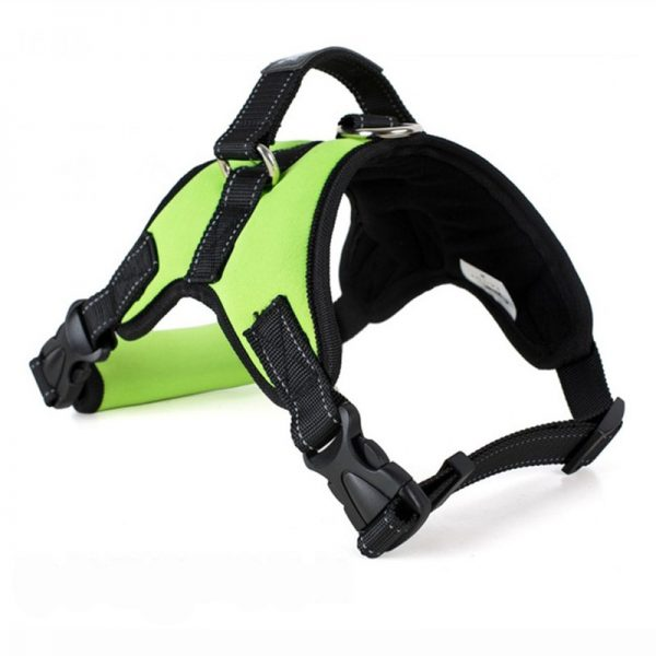 Tailup Neoprene Dog Harness Green